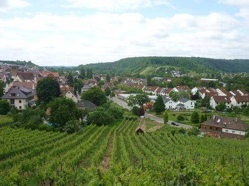 mundelsheim-2014--0041